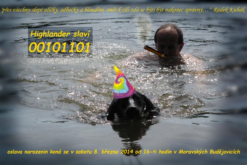 E Birthday Invitations for adorable invitation ideas